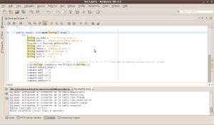 Pantallazo-BackupPg - NetBeans IDE 6.5